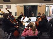 cellos and basses rehearse for upcoming concert